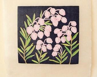"""Original woodcut print """"Andromeda polifolia"""" Bog rosemary"""