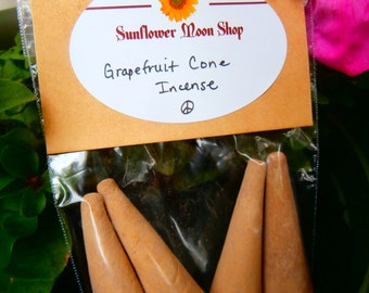 Various Fruit Scented 3inch Incense Cones