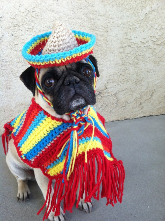 Hats for dogs-Costumes-Cinco De Mayo-Pugs-Novelty Hats-Hats for Pugs-Pugs