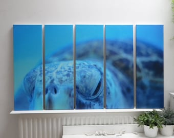 5 set canvas size 60 x 100 cm (overall size) of sea turtle, Okinawa, Japan. From the www.fjpicture.com collection