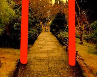 "Fine Art Photo - Title: ""Zen"" - billi j miller photography - Zen, garden, oriental, red, color, vibrant, rain, lush"