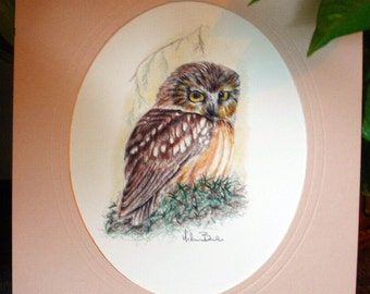 The Watchful Owl Print