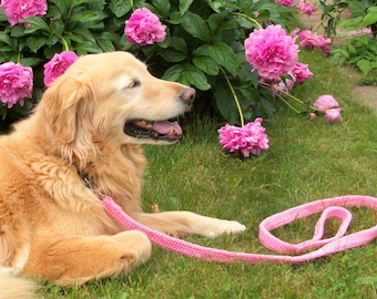 Pink Leash for Medium to Large Dogs, Pink Wedding Leash, Three Foot Length  PDL03