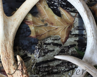SALE-Letter Q, Antler, Whitetail Buck Shed, Photography, Alphabet, Hunting