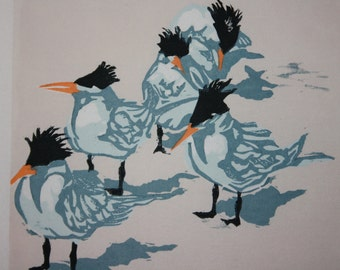 "Royal Terns  6"" x 6"""