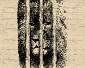 Caged lion PNG & JPEG Zoo Digital Collage Sheet Image Instant Download Printable Graphics Iron On Transfer Fabric Totes Pillows Towels An149