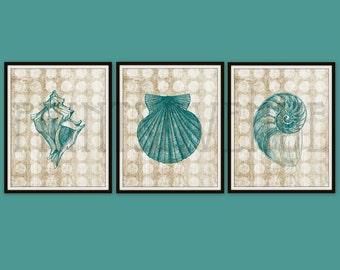 SHELL Art Print, BEACH Wall Art, SHELL Wall Decor, Seaside Art Prints, Teal and Sand