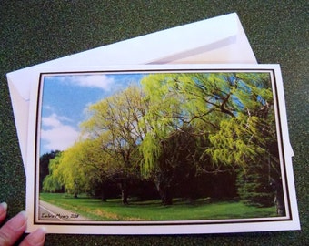 Spring lushness note card