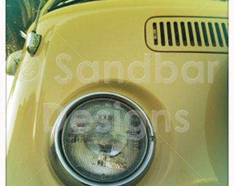 4 x 4 photo Starfruit VW bus