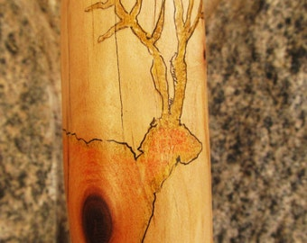 Chaco Canyon Maple Walking Stick