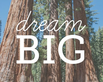 Dream Big - quote on photo of trees