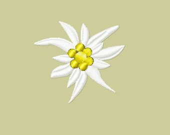 Embroidery pattern - Edelweiss w/o leaves