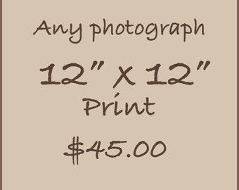 """12"""" x 12"""" print"""