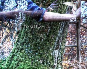L ' tree - photography - print ' art - format 20x17cm