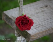 Red Rose On Swing 5x7