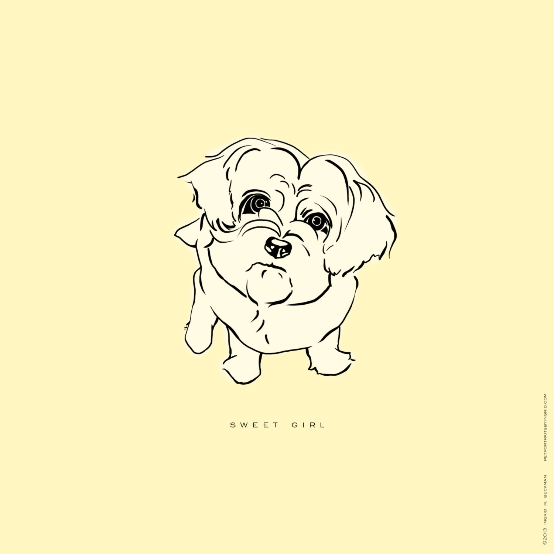 dog art peekapoo art peekapoo drawing dog lover gift