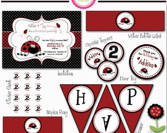 Ladybug Party Package
