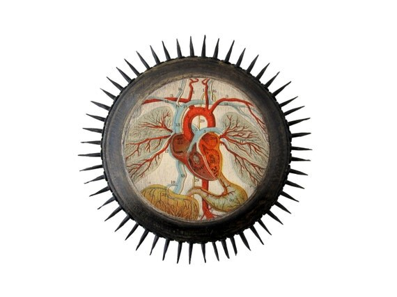 Anatomical Heart - Mixed Media Art Plaque - Original Sushipot Prickly Plaque