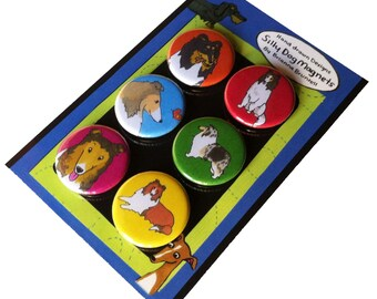 Collie Silly Dog Magnet Set