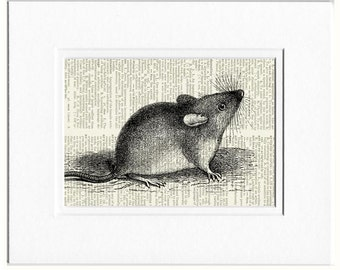 mouse dictionary page print