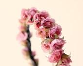 Bridal hair crown, Flower crown, Pink bridal accessory, Floral headpiece, flower girl crown - JARDIN