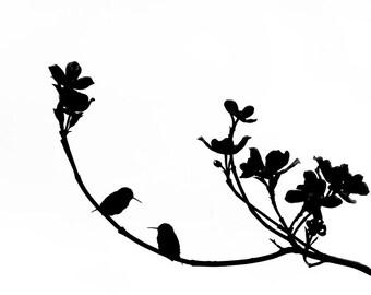 Birds In Silhouette Hummingbird Art Print Bird Black White Minimalist Photography
