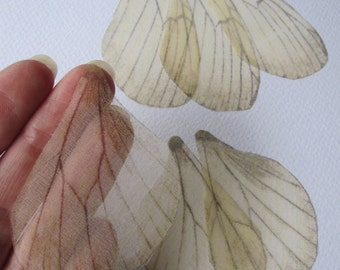 Light - Ivory Silk Organza Butterfly Wings of Silk Organza - 6 Pieces