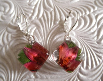 Ombre Pink-Peachy Boronia, Ferns Pressed Flower Glass Square Leverback Earrings-Gifts Under 25-Spring Tulips-Symbolizes Admiration, Solitude