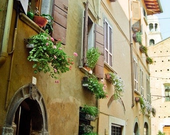 Italy Photography emerald green stucco yellow geraniums windowbox door shutters flat travel cobblestone - Passaggio - fine art photograph
