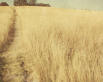 prairie landscape southwestern gold gray robins egg blue green -  A Path for Wyeth - Fine Art Photography Print