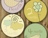 Birdies - Monthly Baby Printable Stickers / Labels - PDF Format