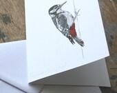 Blank Card - Great Spotted Woodpecker