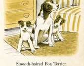Fox Terrier Dalmation Illustrations by Tibor Gergely from a Vintage Childrens Book