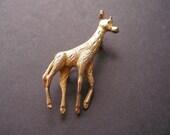 Golden Giraffe Brooch