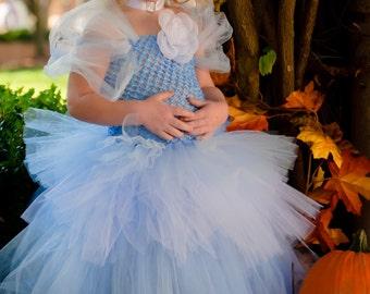 Cinderella Tutu Costume sizes 12-18m, 18-24m, 2t, 3t, 4t, 5t