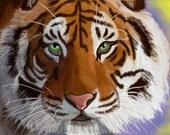 Title: Siberian sunset print 13x19 Hand signed by artist Bella Lyle siberian tiger unframed