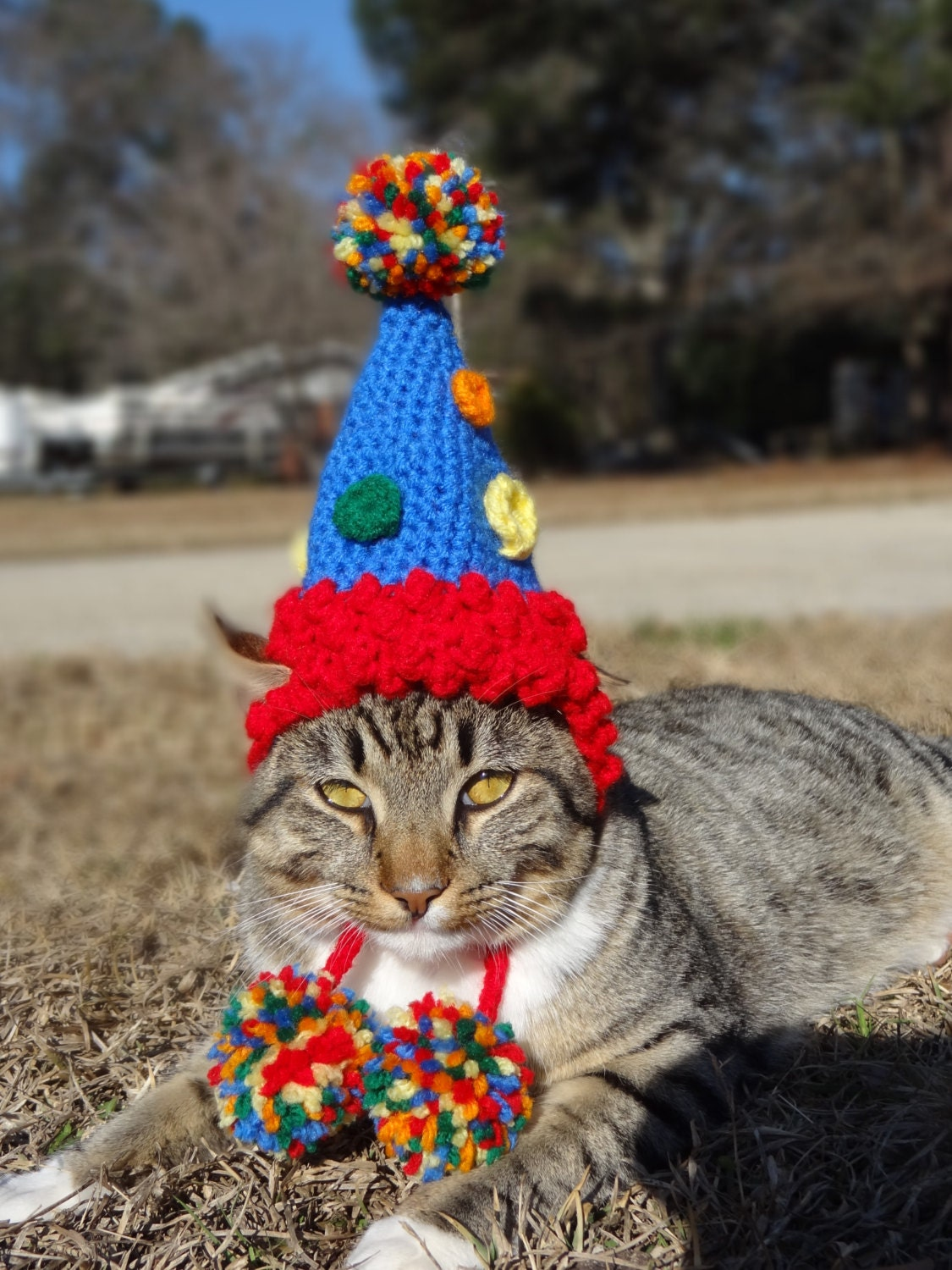 Pet Birthday Hat Party Hat for Cats Party Hat for Dogs Cat