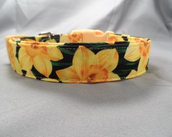 Daffodils Dog Collar
