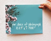 Any Photograph - 5x7 Photography Print, Fine Art Print, Your Choice of Photo - Affordable Wall Art, Home Decor