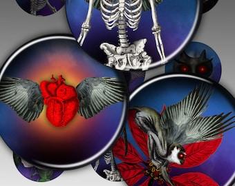 Digital Collage Sheet - Skeletons - Bottle cap images for pendants magnets bottle caps paper craft -Set 128
