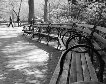 """Central Park, New York Photography, 8x10 Fine Art Print, black and white, benches, """"Take a seat"""", home decor"""