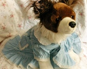 Blue Dotted Wedding or Party Pretty Dress Altered for Small Dog with Ribbon Embellishment Upcycled