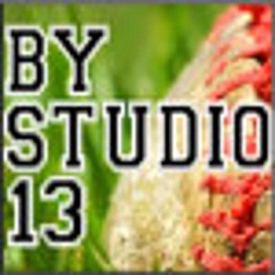 ByStudio13