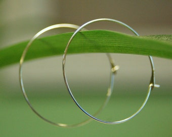 Simple Sleek Hoops