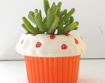 Cupcake Planter, Cactus Pot, Succulent Planter, Sweet Heart Design, Orange ceramic, Office Gift/ Housewarming Gift,,Cupcake Theme Kitchen