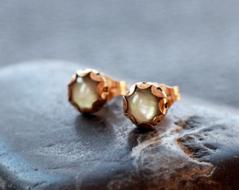 Mother of Pearl Stud Earrings, Black Mother of Pearl, 14k Gold Filled Post, Scalloped Setting, Elegant Gemstone Handmade Jewelry, 6mm Gem