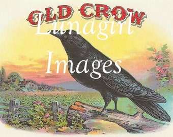 55 BIRDs vintage images DOWNLOAD Victorian pictures antique labels crows bluebirds robins roosters peacock printables digital art ephemera