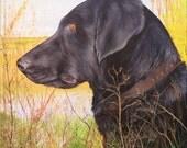 Custom Pet Portrait Pet Painting 8x10 Any Animal Artist Sharon Lamb