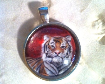 Tiger Art Jewelry. Real Glass. 1 Inch Circle Silver Pendant. He Ate My Heart. Zodiac. LSU. MU. AU. University Mascot. College. Division 1
