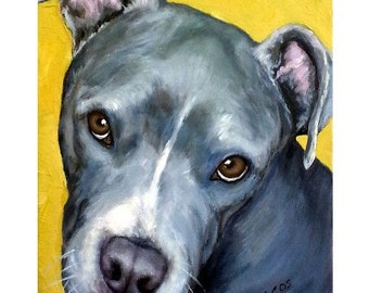 Pit Bull Art Print, Blue Pit Bull with brown eyes on gold, by Dottie Dracos